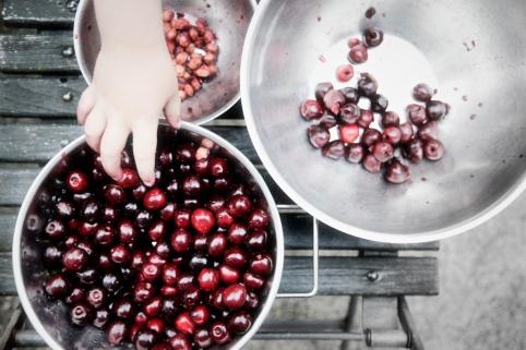 hånd og udstener kirsebær