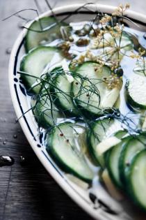 Agurkesalat-med-spidskommen-ingefær-og-fennikel
