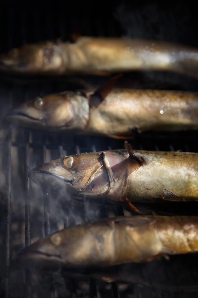 Makreller-i-røgeovn