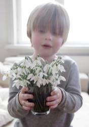 Lillebror Johan har ikke fået sin ejen have endnu, og plukker istedet smukke foråsblomster til stuen.