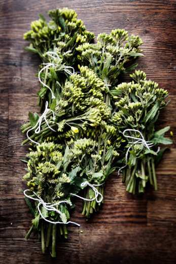 Lynstegte_Rapsskud_rapini_broccoliskud_