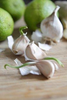 Rapsskud_Hvidløg_lime_kylling_aromatisk_thai_marinade_rub