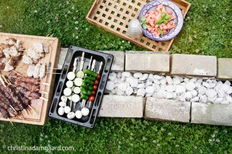 Teryaiki grill hvordan laver man - Ungernes have-5