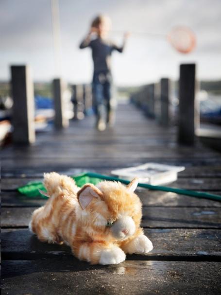 Missekat-er-med-ude-at-fiske_ungernes-have_strandkrabbesuppe