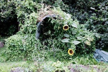Ungernes-drivhus-er-vokset-til-i-snerler