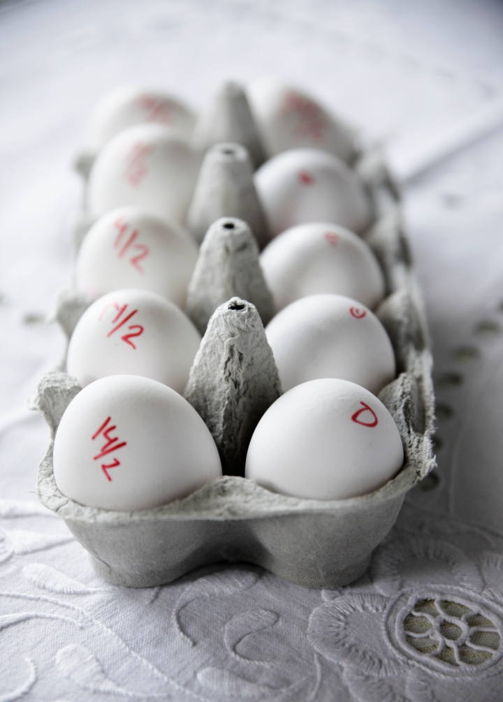 Sous_vide_egg_æg_pocheret_opbevaring_dato